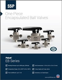 Ball Valves - EB Series Encapsulated