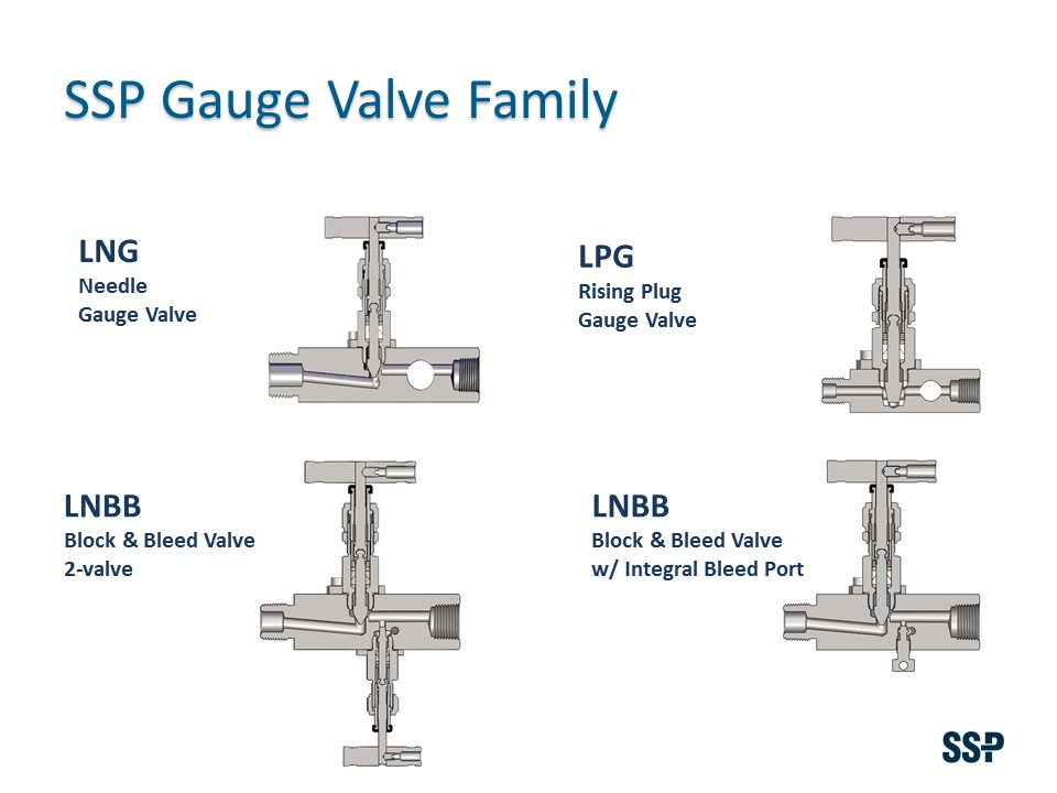 Gauge Valves Types.jpg